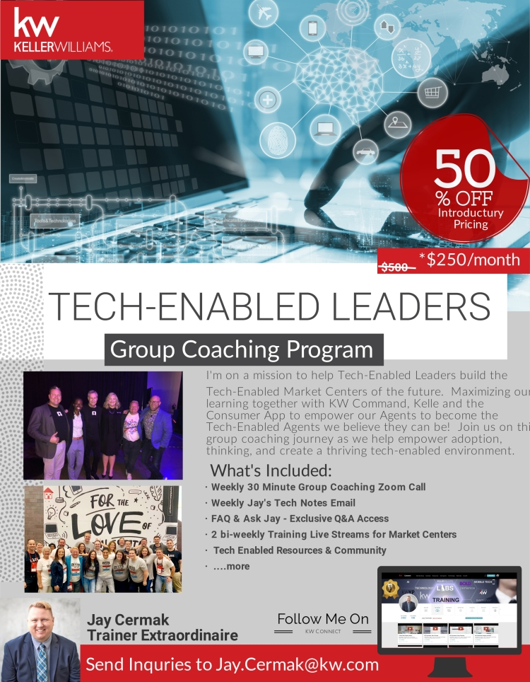 techenabledleaderscoaching_1_original (1)
